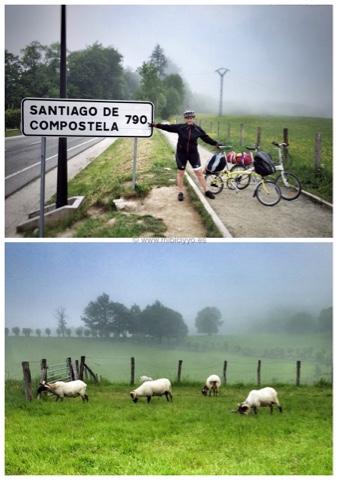 Roncesvalles - Santiago de Compostela