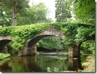 ireland-county_wicklow-derrybawn_bridge_05