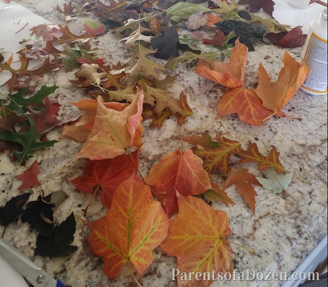 2015-10-02 2015-10-02 Fall leaf craft 040