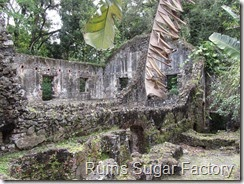 132 Ruins Sugar Factory, La Pagerie