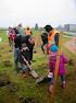 Plantactie Kleine Everseweg Zaventem
