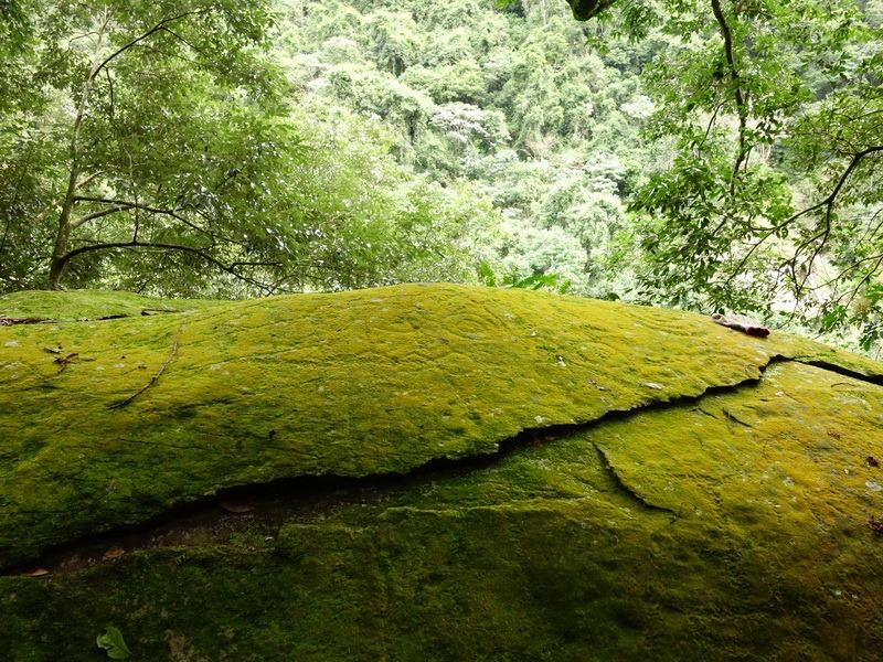 2014_0101-0105 萬山神石、萬山岩雕順訪萬頭蘭山_0572