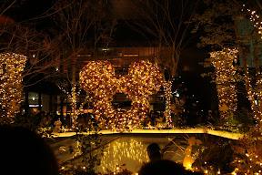 東急プラザ 表参道原宿「おもはらの森」のクリスマスイルミネーション2012