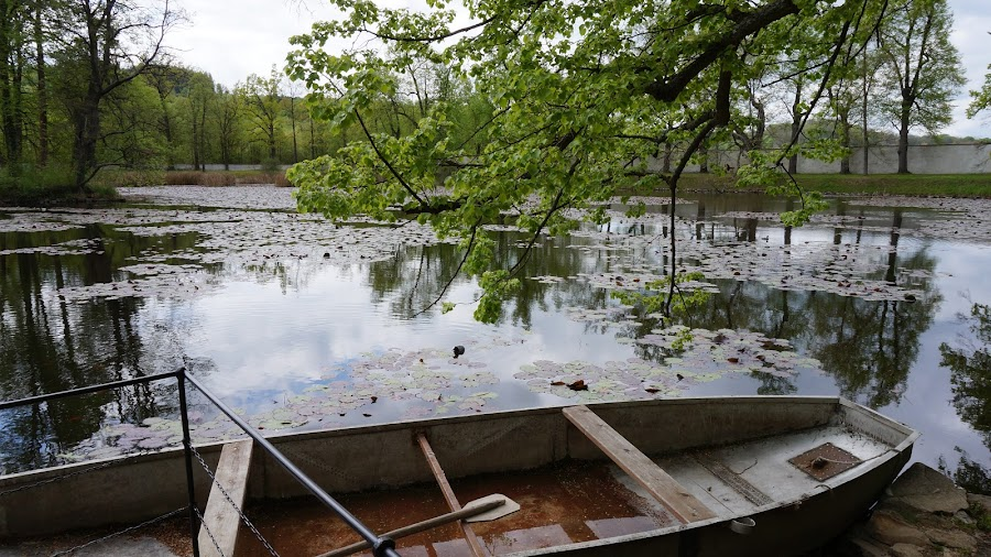 Пруд в парке Крумлова