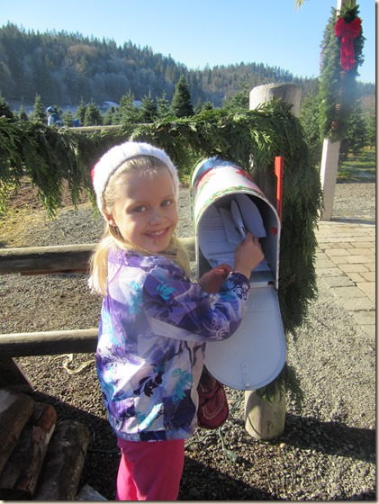 11-27 Christmas tree 6