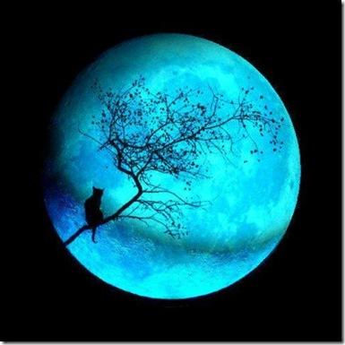 luna azul-480x480
