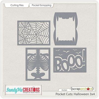 SPC_PCH-3x4-copy