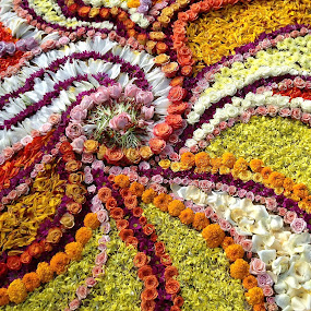 Flower mandala by Ray Cloutier - Flowers Flower Arangements ( design. flowers. beauty. mandala. temporary, Flowers, Flower Arrangements )