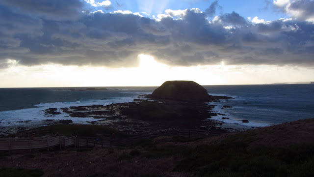 Phillip Island, near Melbourne, is a great place to spot wildlife in a pristine setting.