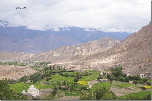 Ladakh239