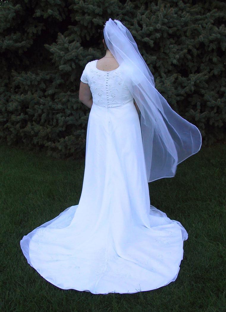 Jen Wedding Dress 11 by  Falln-Stock on deviantART