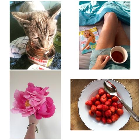 Instagram Momente