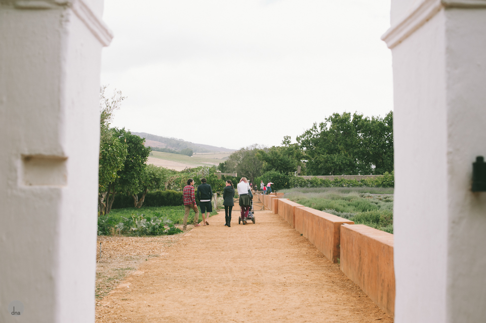 Adéle and Hermann wedding Babylonstoren Franschhoek South Africa shot by dna photographers 05.jpg