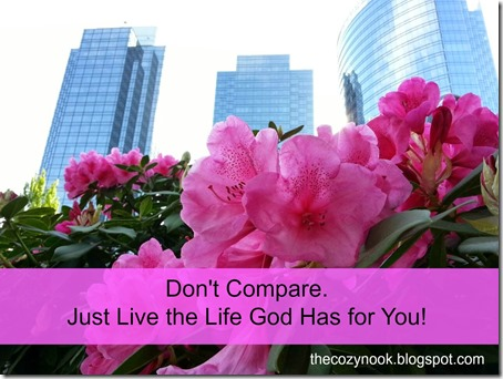 Don't Compare - The Cozy Nook