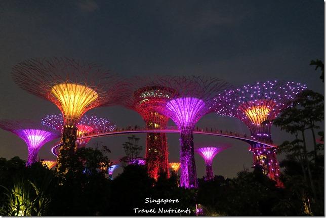 新加坡超級樹燈光秀 (23)