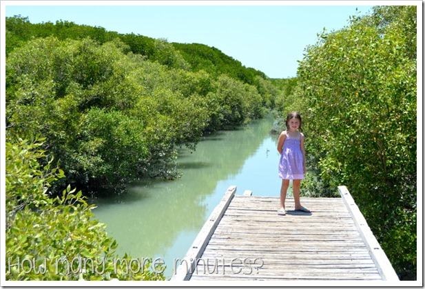Streeter's Jetty, Broome | How Many More Minutes?