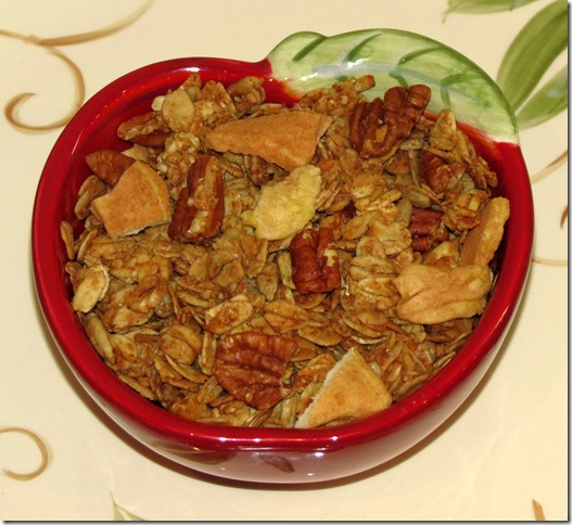 Apple Cinnamon Granola (Gluten Free) 10-20-15