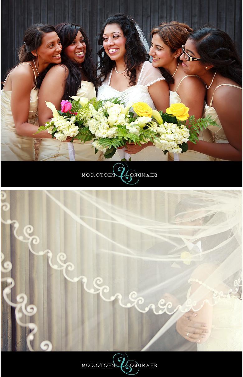 Indian wedding blog 1 copy