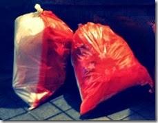 Maastricht  trash bags