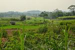 bajkowe krajoobrazy na centralnej Jawie