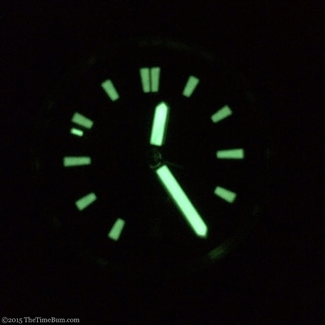 Makara Hawksbill Sea Turtle Dive Watch lume