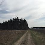 2015_ 4_11_22_20.jpg