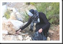 Stones.Woman.Terrorist