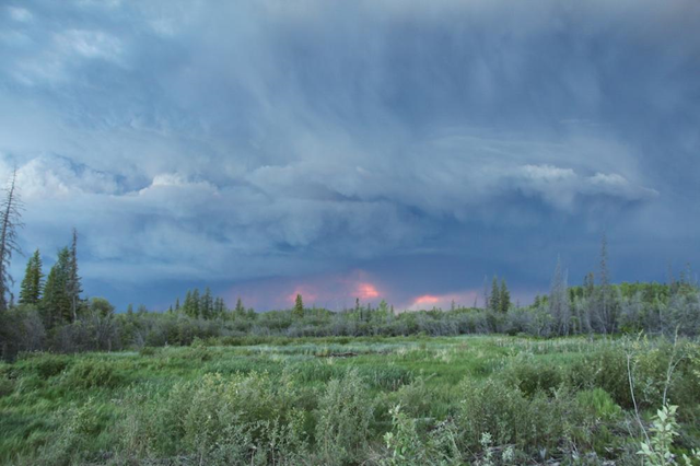Forest fire in the Northwest Territories of Canada, Summer 2014. Photo: Meagan Wohlberg