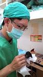 照顧新生兒是最麻煩的事情,要保溫,吸氧;沒有自主呼吸還要不斷的刺激胎兒