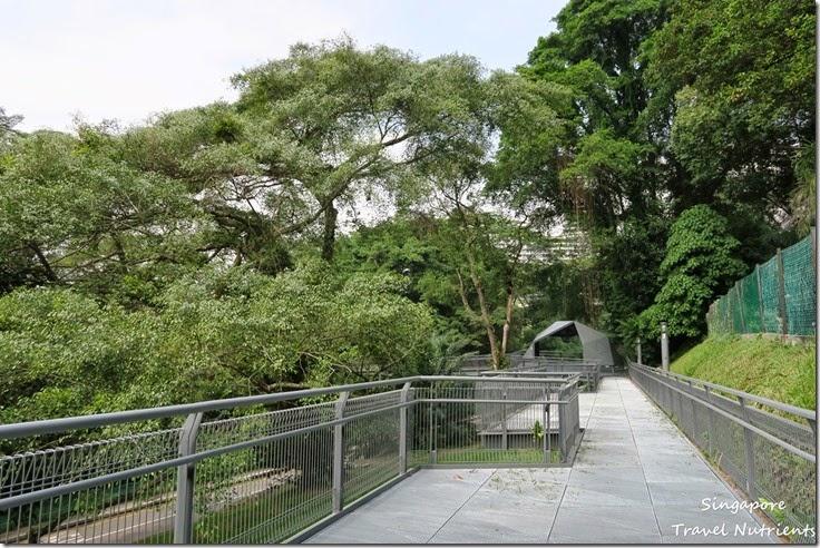 新加坡花柏山 (82)