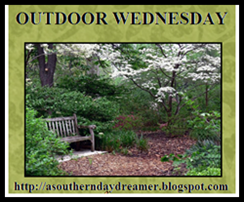Outdoor-Wednesday-logo_thumb1