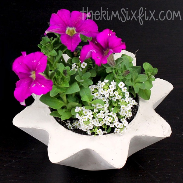 Flower pot concrete planter