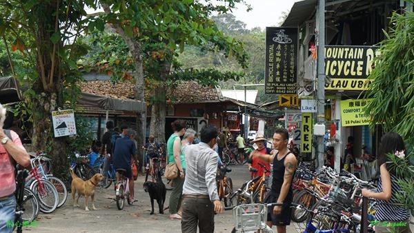 脚踏车出租服务的小店