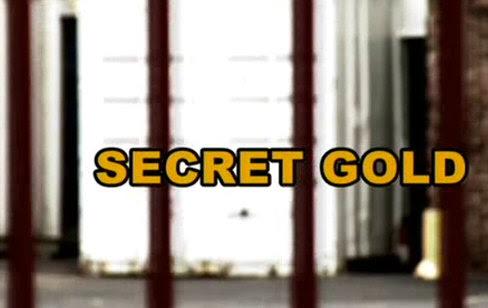 Id¼ z³oto do z³ota / Secret Gold (2008) PL.TVRip.XviD / Lektor PL