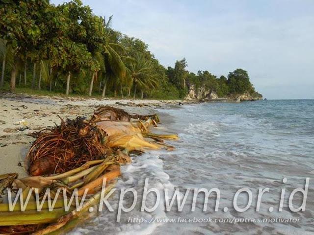 sampah pesisir pantai palippis sulawesi barat