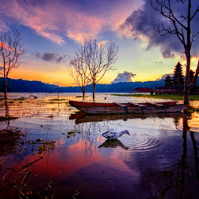 Morning in Lake by Hendri Suhandi - Landscapes Sunsets & Sunrises ( tranquil village, temple, bali, lake, travel, sunrise, tamblingan )