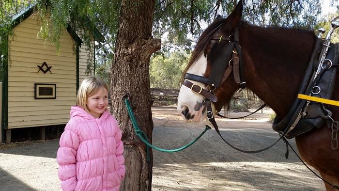 virtù - mae is keen on horses
