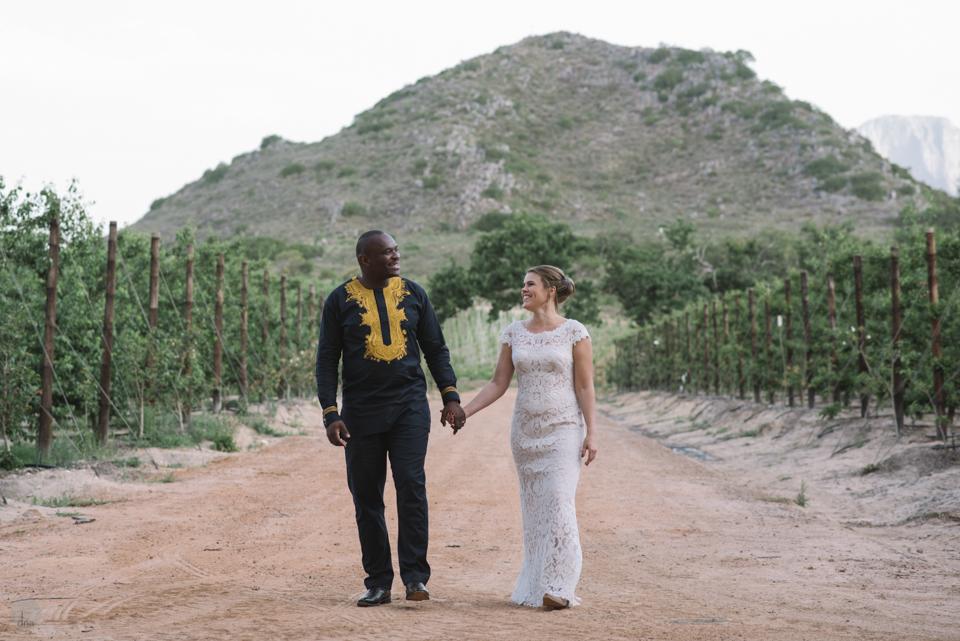 Hannah and Pule wedding Babylonstoren Franschhoek South Africa shot by dna photographers 988.jpg