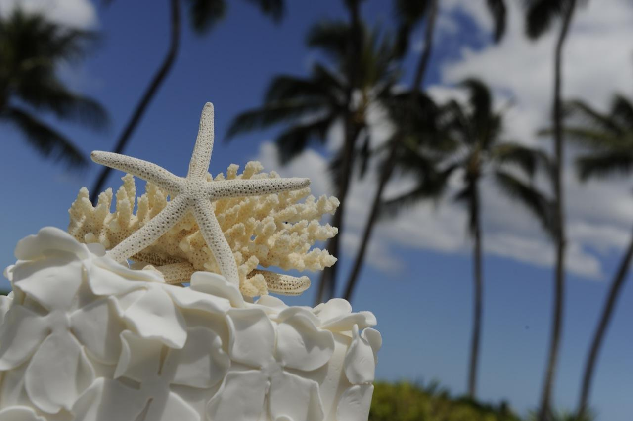 Hawaii- Disney Weddings