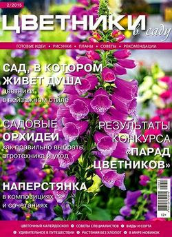 Цветники в саду №2 (февраль 2015)