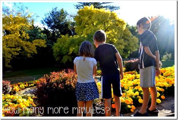 Royal Tasmanian Botanical Gardens ~ How Many More Minutes?