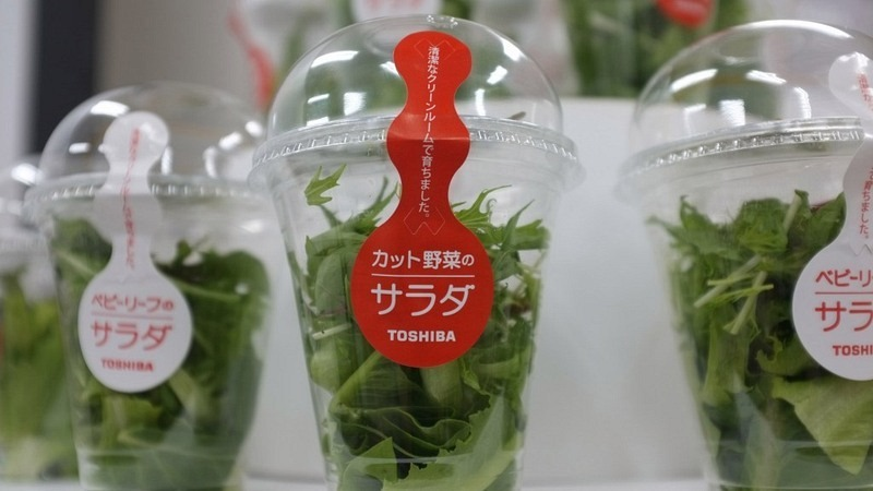 toshiba-salad-package-1