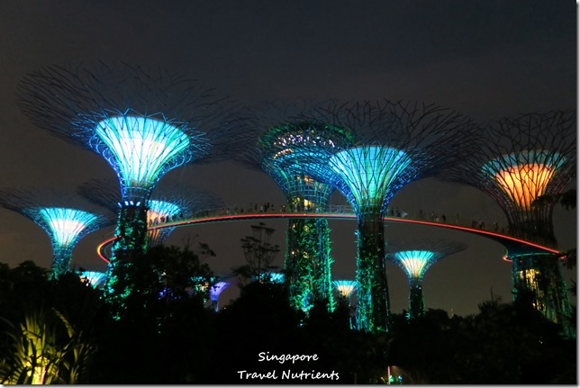 新加坡超級樹燈光秀 (28)