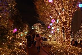 新宿サザンテラス小道のイルミネーション2014-2015