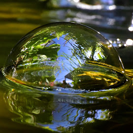 The World In A Bubble by Marco Bertamé - Nature Up Close Water ( water, bubble, reflection, blue, green, round, bokeh, sdof )