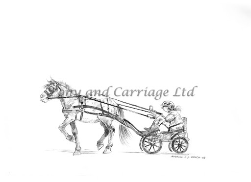 """Sketch 8 """"Who said size doesn't matter?""""  With hands at approximately midriff, the reins should be a little above the rump of the horse. If the carriage is too small, the reins will drag down over the rump and you will lose good contact resulting in no steering, poor braking and loss of vision. Ask for advice etc….."""
