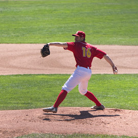 Winding Up For The Pitch by Garry Dosa - Sports & Fitness Baseball ( red, throwing, game, teams, action, baseball, pitcher )