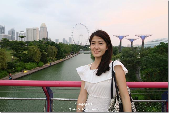 新加坡超級樹燈光秀 (8)