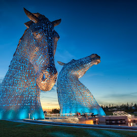 The Kelpies by George Johnson - Buildings & Architecture Statues & Monuments ( scotland, animals, kelpies, horses, horse, night, sunrise, landscape )