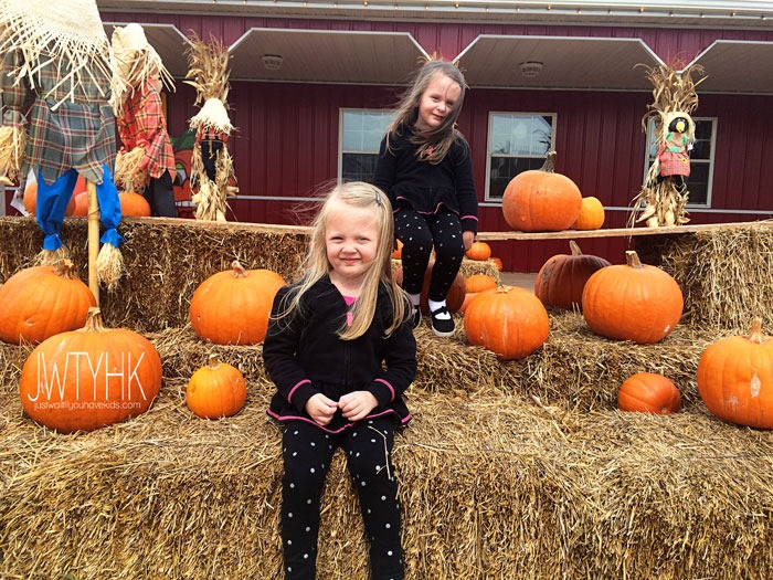 Pumpkin-Patch-Hay-Bails
